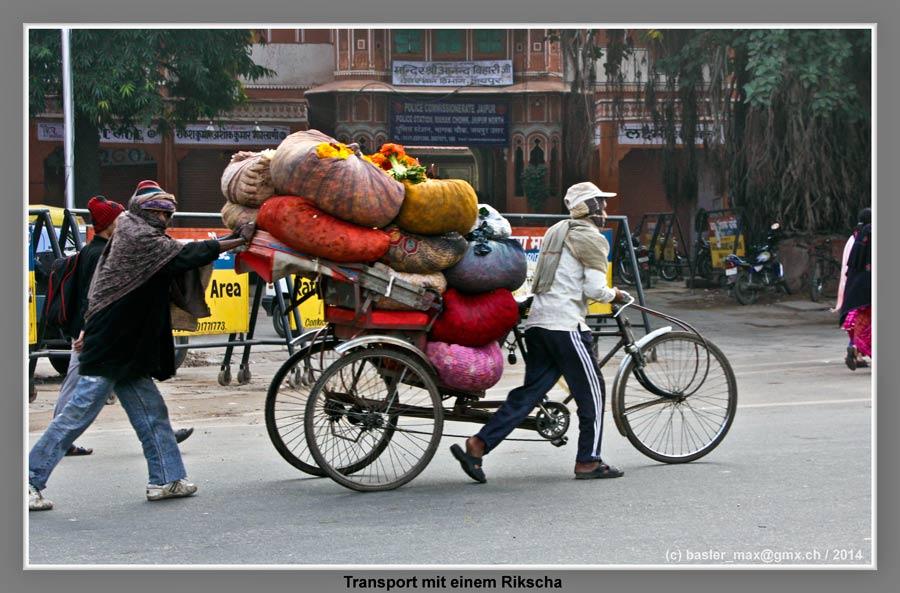 """13. - 30. Jan. 2014: Provinz Rajasthan (Indien) - Forts ..."