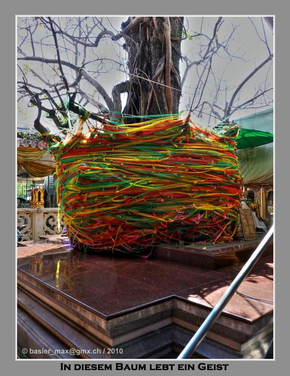 P1030965_6_7_HDR Photomatix Ban Phli Tempel Geist im Baum PICASA THAI HIT4 75bpi