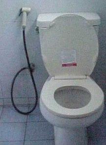 Toilette mit Spühl- und Reinigungs-Brause