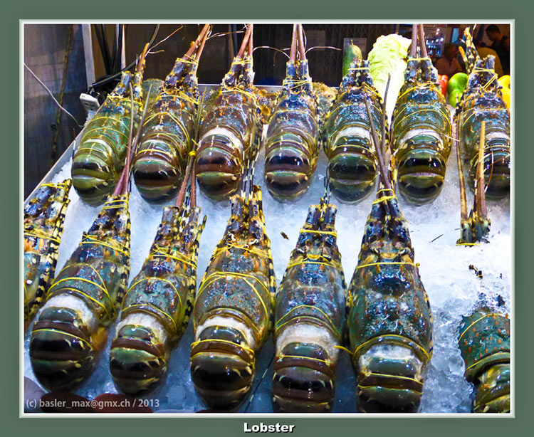 Hua-Hin Night Market: Lobster