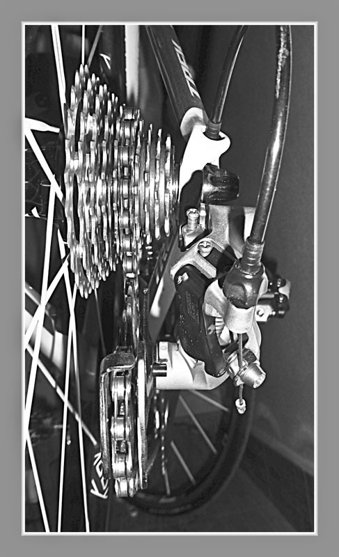 Rennrad Trek Madone 5.2: Shimano Ultegra Schaltung