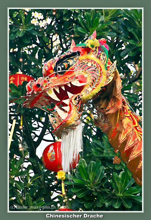 7. Feb. 2016: Hua-Hin Chinesisch Neujahr (Silvester): Drache